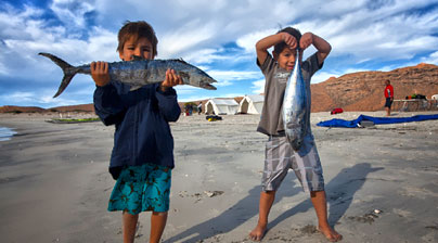 Unforgettable adventure in Baja!! Eco Migrations