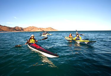 Espiritu Santo Island By Sea Kayak Eco Migrations